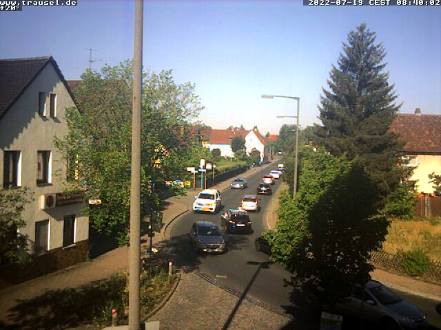 Livebild der Webcam